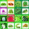 KRIWIN 51 Varieties 2215+ seeds(Organic/Hybrid) Fruits & Vegetables Seed with Start your own Garden Guide booklet #2