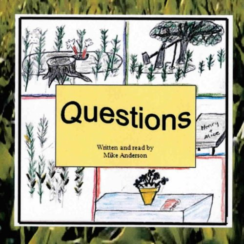 Questions audiobook cover art