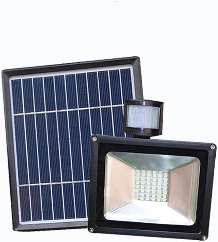 Im Freien wasserdichte Solar-Sensing-Flut-Licht-im Freienwand-Licht-Garten, der neue lndliche Straenlaterne beleuchtet