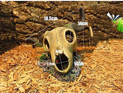 JRTAN & Pet Habitat Lizard Snake Spider Lair Eidechsenschlangenspinnensimulationsharzschädel-Dodgeloch, Schafschädel 2
