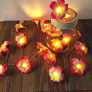 Sezrgiu Artificial Plumeria String Light Frangipani Flower Garland Fairy Lights Battery Powered for Wedding Beach Party Decor