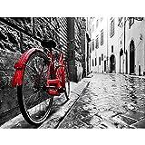 Papel Pintado Fotográfico Bicicleta roja 352 x 250 cm Tipo Fleece no-trenzado Salón Dormitorio Despacho Pasillo Decoración murales decoración de paredes moderna - 100% FABRICADO EN ALEMANIA - 9220011a