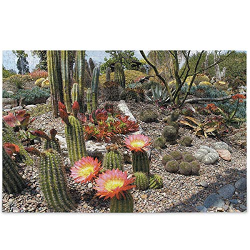 Oarencol Rompecabezas de cactus tropicales naturales, 500 piezas, coloridas flores de jardín, rompecabezas para adultos y niños, Multicolor, 1000 pieces