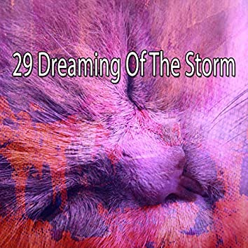 29 Dreaming of the Storm