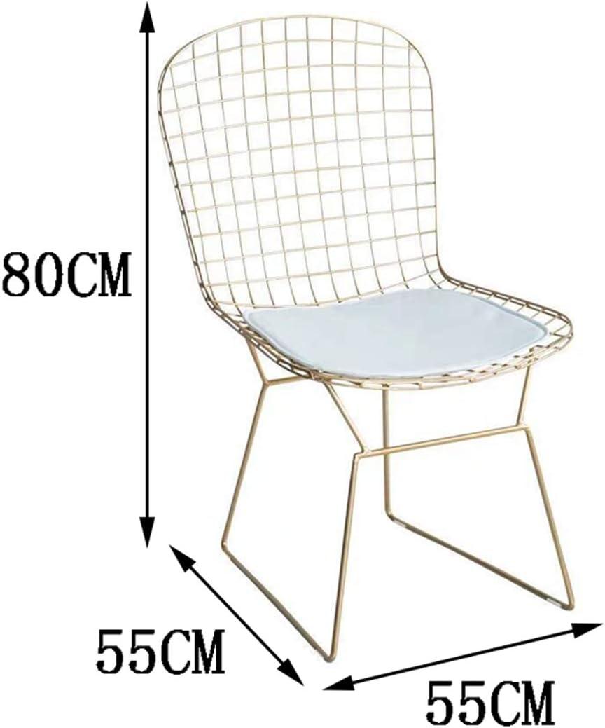 ANZML Chaise De Salle à Manger, Chaise De Salle à Manger D'hôtel Chaise De Café Table à Thé Chaise Chaise De Loisirs Chaise en Fer Forgé A A