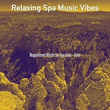Magnificent Music for Spa Days - Koto