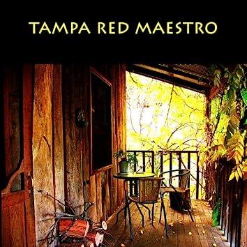 Tampa Red Maestro