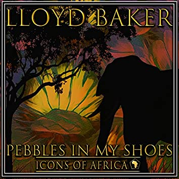 Pebbles In My Shoes
