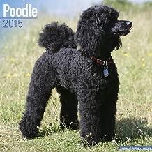 Toy & Miniature Poodle Calendar - Just Toy & Miniature Poodle Calendar - 2015 Wall calendars - Dog Calendars - Monthly Wall Calendar by Avonside by Avonside Publishing LTD