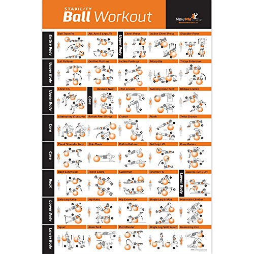 Exercise Ball Poster Laminated - Total Body Workout - Personal Trainer Fitness Program - Swiss, Yoga, Balance & Stability Ball Home Gym Poster - Tone Your Core, Abs, Legs Gluts & Upper Body - 18'x 27'