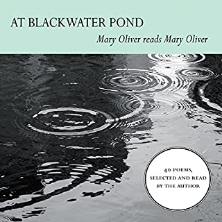 At Blackwater Pond audiobook cover art