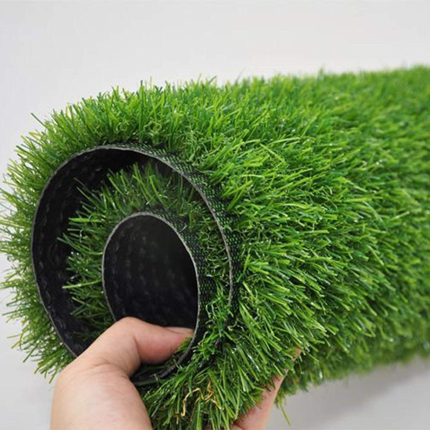 バラエティソーシャルメディアGAPING 人工芝、人工芝、屋内と屋外の風景に適した人工芝敷物、面積1x2m、高さ15mm、2色あり (Color : B 1x4m)