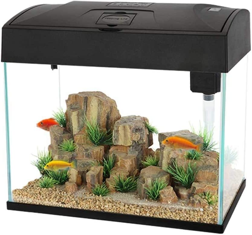 Fischbehälter Aquarium 20l Wohnzimmer Desktop Fisch Behälter ökologischer Mini Goldfish Tropical Fish Tank Transparent Office Schildkröte Tank Color Black Size 37 23 5 33 5cm Amazon De Küche Haushalt