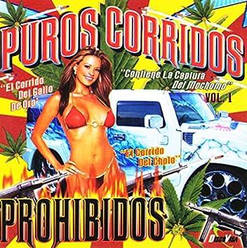 Puros Corridos Prohibidos Vol.1