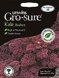 Unwins Pictorial paquete–Kale redbor F1–30semillas
