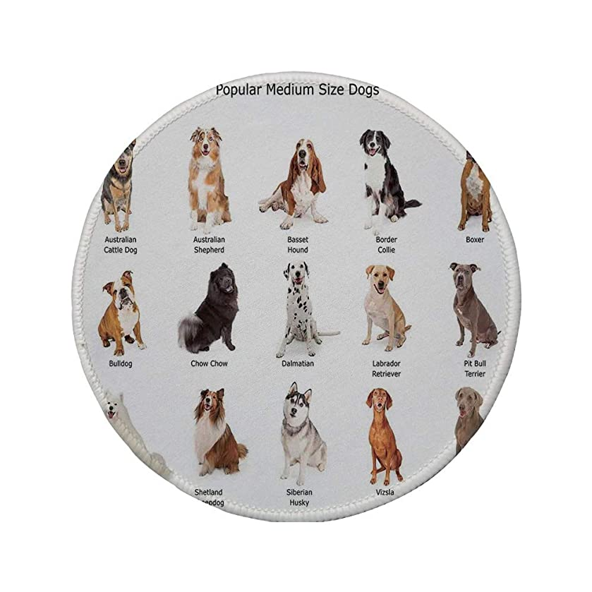 Non-Slip Rubber Round Mouse Pad,Dog Lover Decor,A Group of Different Puppy Breeds Family Type Species Dalmatian Husky Bulldog Image Print,Multi,11.8