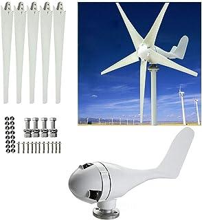 BTdahong - Generador de turbina de viento horizontal de 400 W y 24 V, color blanco, kit de 5 cuchillas para control de carga de bajo ruido