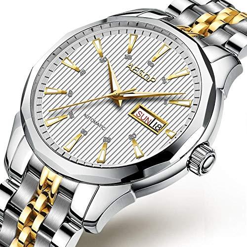 CQOQ Zafiro Reloj Mecánico Automático De Los Hombres De Lujo De Oro De Los Hombres S De Acero Inoxidable Reloj De Pulsera Hombre Reloj Hombres Masculino Relógio (Color : White B)