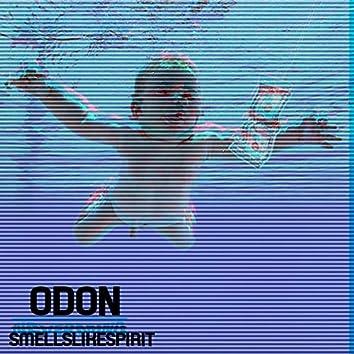 SmellsLikeSpirit