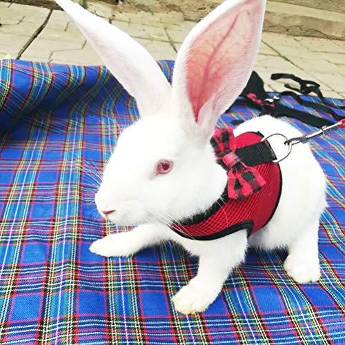 Petiwa ウサギ 猫 ハーネス 伸縮 リード 調整可能 小動物用 お散歩 うさぎのハーネスランランハーネス(L,レッド)