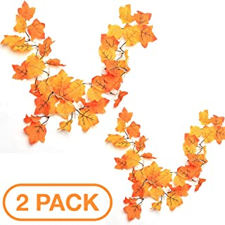 Thanksgiving Decorations Lighted Fall Garland, Thanksgiving Decor Halloween String Lights 8.2 Feet 20 LED (2 pc)