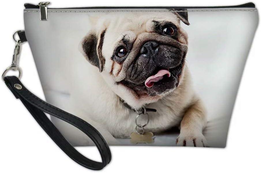 Aulaygo - Bolsas de maquillaje para mujer, diseño de perro carlino, con cremallera, para niños, adolescentes, viajes, tren, escuela, regalos Multicolor Perro de carlino 1 talla única