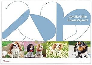 365カレンダー 2020年 キャバリアキングチャールズスパニエル カレンダー 壁掛け 卓上付き 2020-002