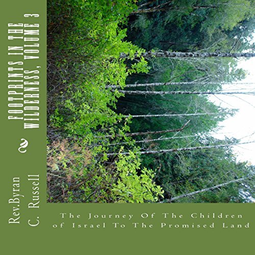 Footprints in the Wilderness: The Journey of the Children of Israel to the Promised Land, Volume 3 Titelbild