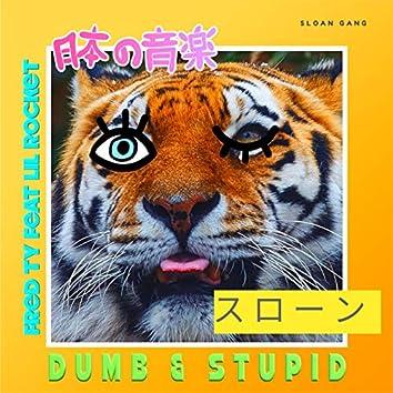 Dumb & Stupid
