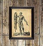 Memento Mori Without Skin, Skelett, Medizin Poster