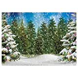 Funnytree 7x5FT Winter Forest Landscape Photography Backdrop Snowy Christmas Pine Tree Background Natural Scene Xmas Party Wall Decoration Supplies Photo Booth