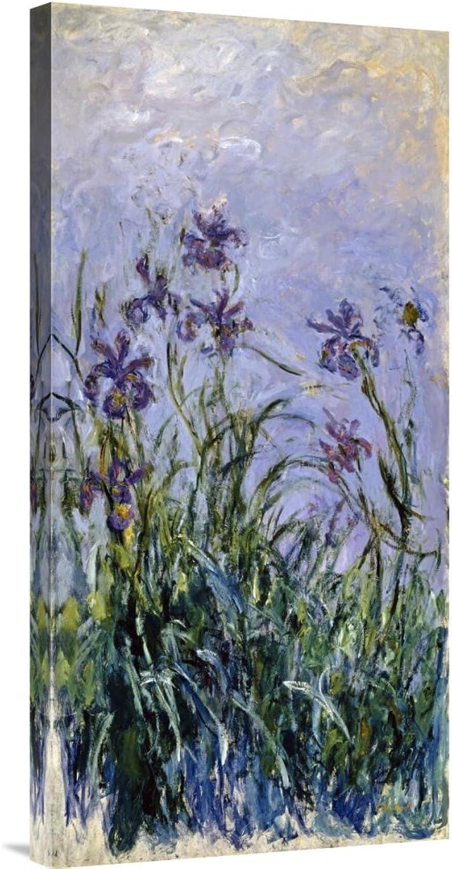 Global Galerie Budget gcs-265187–76,2–360,7 cm Claude Monet Iris Iris Iris Mauves Galerie Wrap Giclée-Kunstdruck auf Leinwand Art Wand B01K1PLL6A | Ästhetisches Aussehen  0da329