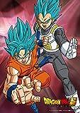 100-piece jigsaw puzzle Dragon Ball super Goku & Vegeta - Super Saiyan God SS] Large piece (18.2x25.7cm)