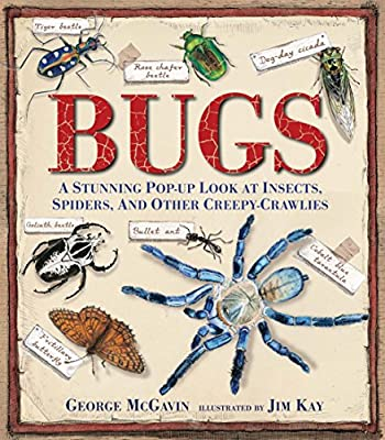 Bugs A Stunning Pop-up Look at Insectes, Spiders, and Other Creepy-Crawlies