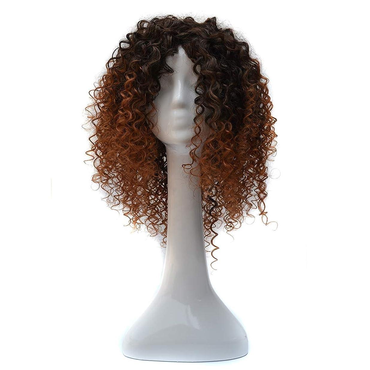 ピグマリオンジャーナル効果的WTYD 美容ヘアツール T191006女性のための短いと小さなカーリーヘアのヨーロッパとアメリカのブラックグラデーションライトブラウンウィッグヘッドギア