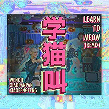Learn To Meow (Remix)