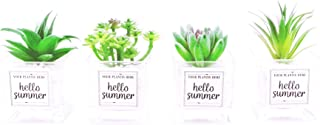 AnotherGifts Assorted Artificial Succulents Potted with Glass Cube Decorative, Faux Succulents Fake Plants for Home Decor Office Decor,Set of 4 (Green)