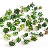 *BALANSOHO 15 peces de plantes suculentes artificials decoratives mixtes suculentes sense tests per a bricolatge decoració de la llar (verd, a l'atzar)