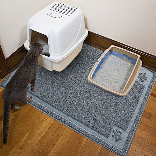 The benefits of Cat litter