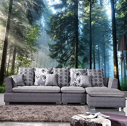 3D vliesbehang, fotovlies, premium fotobehang, behang, zonneschijn, bos, natuur, landschap, fotobehang, woonkamer, slaapkamer, achtergrond, wanddecoratie, wandfoto 250*175 250 x 175 cm.