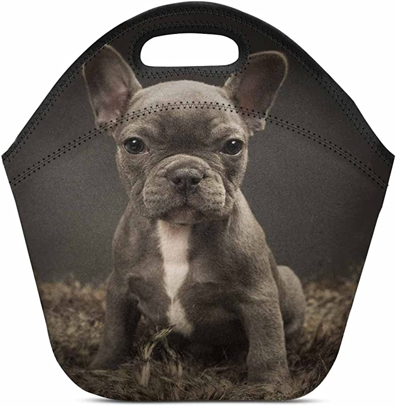 InterestPrint Neoprene Lunch Boxes Lunch Bag Tote Baby French Bulldog Cute Puppy Insulated Gourmet Tote Cooler For Men Women Kids 11 93 X 11 22 X 6 69 Inch