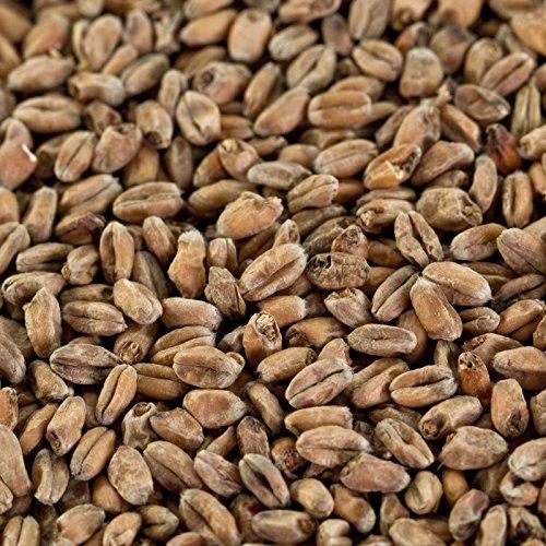1 kg Weizenmalz dunkel für dunkle Biere EBC 14-18