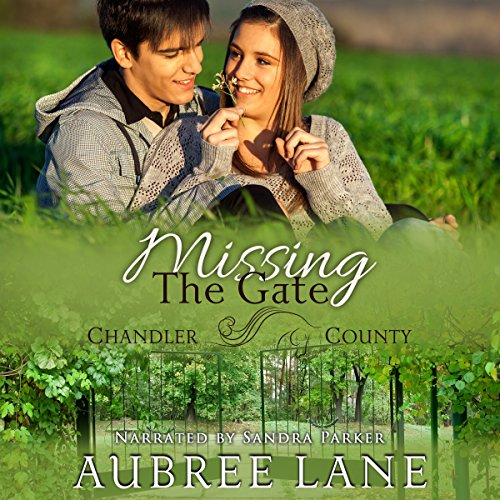 Missing the Gate audiobook cover art