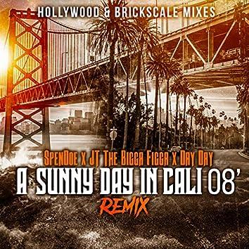 Wonderful Feelin (A Sunny Day In Cali 08) (Remix)