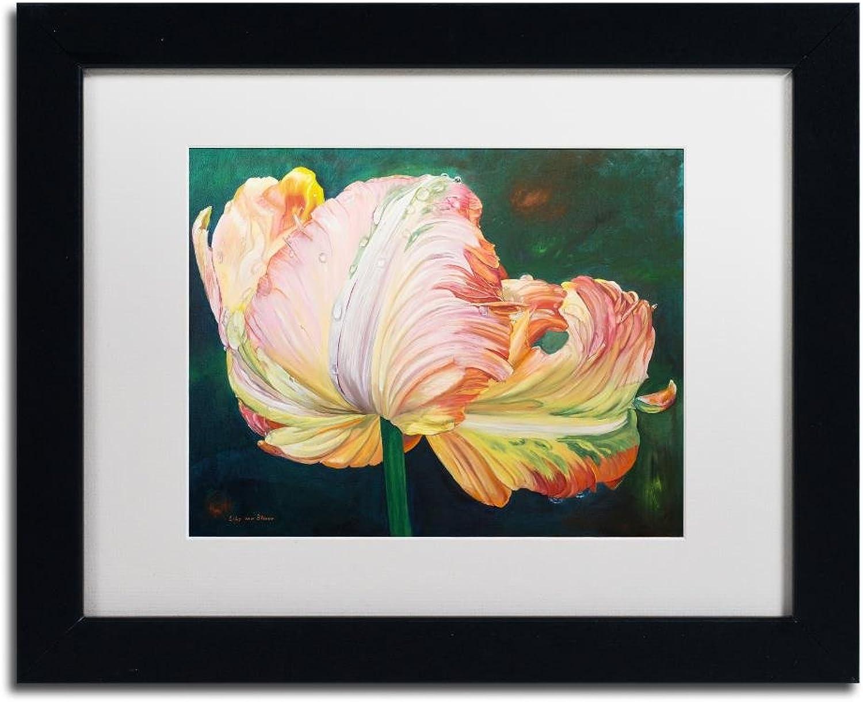 Trademark Fine Art A Flaming Parred Tulip by Lily Van Bienen, White Matte, Black Frame 11x14