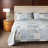 SLPR Cottage Floral 3-Piece 100% Cotton Lightweight Quilt Set - Queen with 2 Shams | Bedding Quilted Bedspread