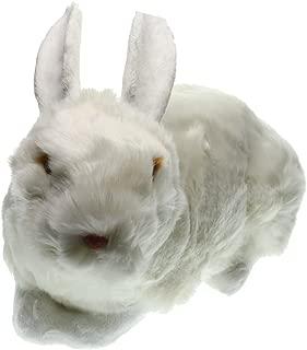 taxidermy rabbit