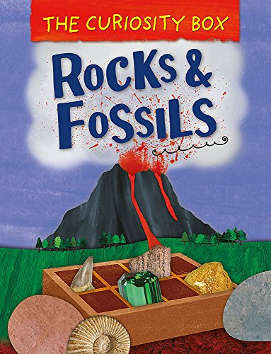 Rocks and Fossils (The Curiosity Box, Band 4)