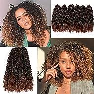 12 Inch Short Passion Twist Hair Marlybob Crochet Hair 6 Small Bundles Kinky Curly Crochet Hair Short Crochet Braids Jerry Curly Crochet Hair Kinky Twist Crochet Hair Crochet Braiding Hair (1B/30#)