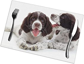 English Springer Spaniel Dining Place Mats Set of 6 Anti-Skid Washable PVC Table Mats 12 x 18 Inch
